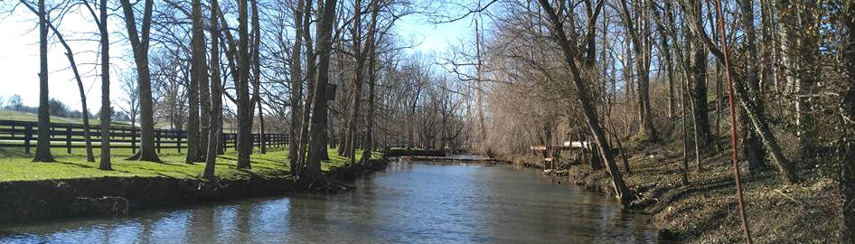 Creek dividing a small forest and Kentucky farmland