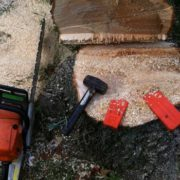 Tools used to remove a large tree