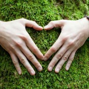 Hands wrapped around a mossy tree. The hands are in the shape of a heart