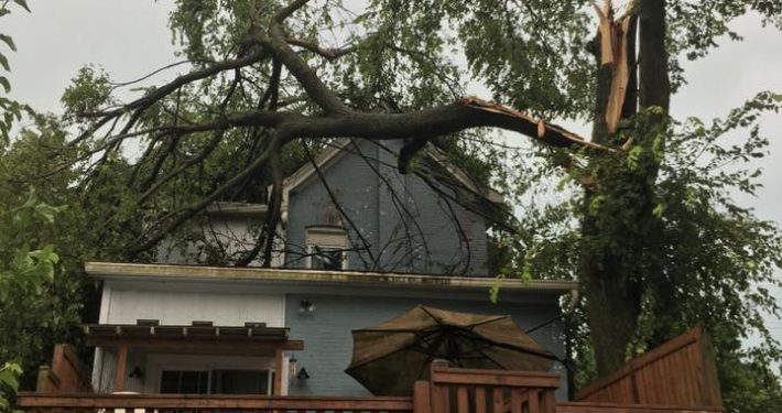 A tree that has fallen onto the roof of a home, going through into the kitchen